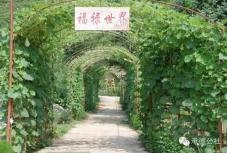 鼎家生态观光园垂钓园